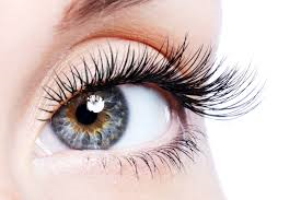 lash extensions at Sparx beauty salon in Winchester